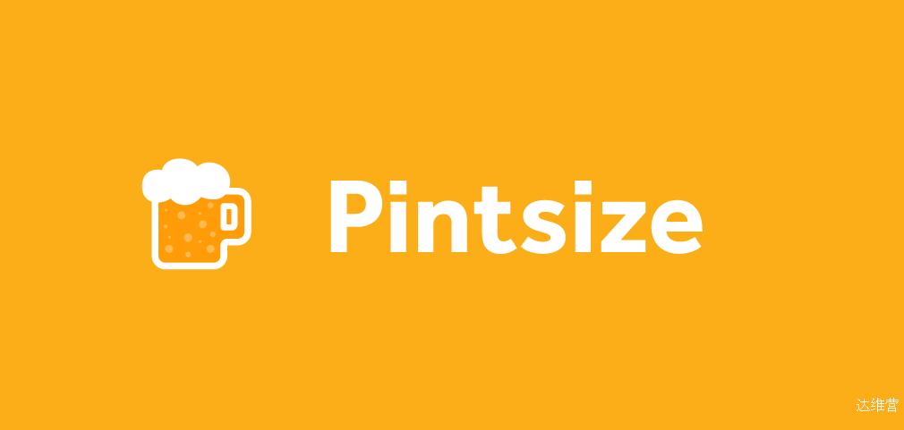 12_pintsize